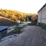 farma pilića